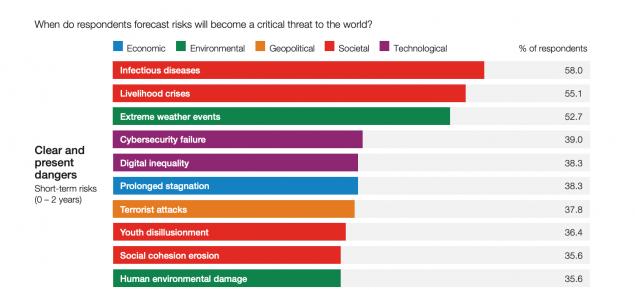 gráfico riesgos globales 2021